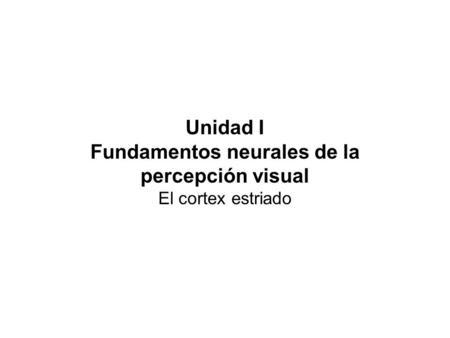 Unidad I Fundamentos neurales de la percepción visual El cortex estriado.