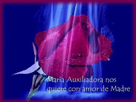 María Auxiliadora nos quiere con amor de Madre. La Virgen María seguirá protegiendo a la Congregación y a la Familia Salesiana si seguimos confiando en.