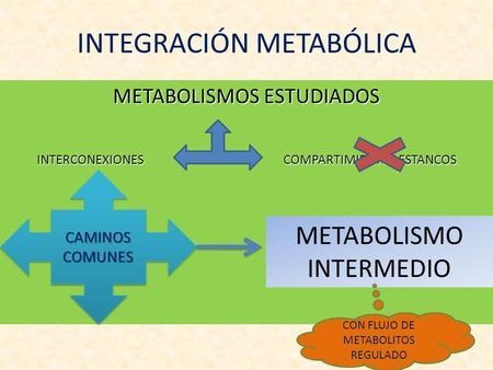 INTEGRACIÓN METABÓLICA METABOLISMOS ESTUDIADOS INTERCONEXIONES COMPARTIMIENTOS ESTANCOS CAMINOS COMUNES METABOLISMO INTERMEDIO CON FLUJO DE METABOLITOS.