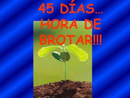 45 DÍAS… HORA DE BROTAR!!!. PACIENTE QUE HA INGRESADO DE URGENCIAS POR HEMATEMESIS. LA ENDOSCOPIA ES LA QUE SIGUE.