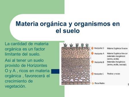 Materia orgánica y organismos en el suelo La cantidad de materia orgánica es un factor limitante del suelo. Asi al tener un suelo provisto de Horizontes.