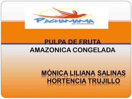 PULPA DE FRUTA AMAZONICA CONGELADA. CONCEPCION DEL NEGOCIO Nuestra comercializadora esta fundamentada en la identidad nacional colombiana, que apoya la.