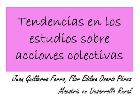Tendencias en los estudios sobre acciones colectivas Juan Guillermo Ferro, Flor Edilma Osorio Pérez Maestría en Desarrollo Rural.