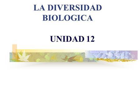 LA DIVERSIDAD BIOLOGICA UNIDAD 12 CONCEPTO Y NIVELES DE BIODIVERSIDAD DIVERSIDAD BIOLÓGICA O BIODIVERSIDAD es la variabilidad de organismos vivos de.