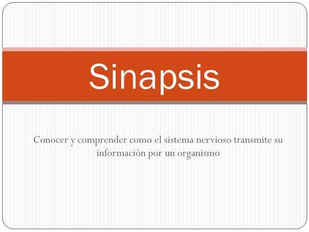 Sinapsis Conocer y comprender como el sistema nervioso transmite su información por un organismo.