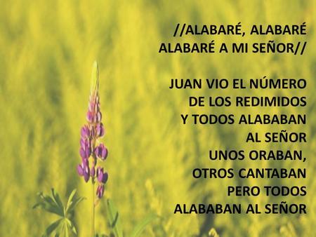 Alabaré //ALABARÉ, ALABARÉ ALABARÉ A MI SEÑOR// JUAN VIO EL NÚMERO DE LOS REDIMIDOS Y TODOS ALABABAN AL SEÑOR UNOS ORABAN, OTROS CANTABAN PERO TODOS ALABABAN.