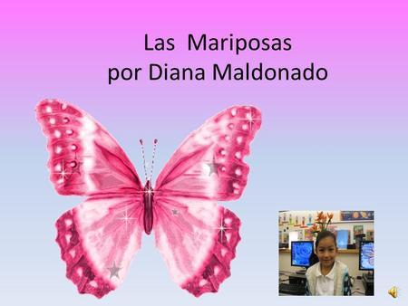 Las Mariposas por Diana Maldonado Tabla de contenido Como es una mariposa? Que hacen las mariposas? Donde viven? En donde se van las mariposas cuando.
