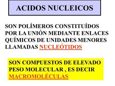 ACIDOS NUCLEICOS SON POLÍMEROS CONSTITUÍDOS POR LA UNIÓN MEDIANTE ENLACES QUÍMICOS DE UNIDADES MENORES LLAMADAS NUCLEÓTIDOS SON COMPUESTOS DE ELEVADO PESO.
