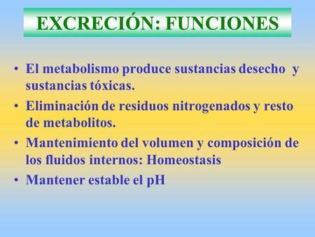 EXCRECIÓN: FUNCIONES El metabolismo produce sustancias desecho y sustancias tóxicas. Eliminación de residuos nitrogenados y resto de metabolitos. Mantenimiento.