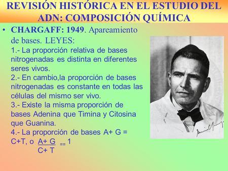REVISIÓN HISTÓRICA EN EL ESTUDIO DEL ADN: COMPOSICIÓN QUÍMICA CHARGAFF: 1949. Apareamiento de bases. LEYES: 1.- La proporción relativa de bases nitrogenadas.